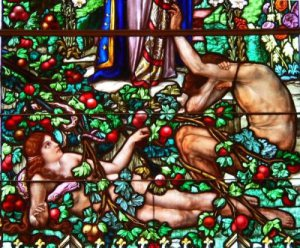 adam-and-eve-stained-glass
